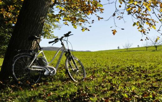 Velokarte Dreiland Radregion