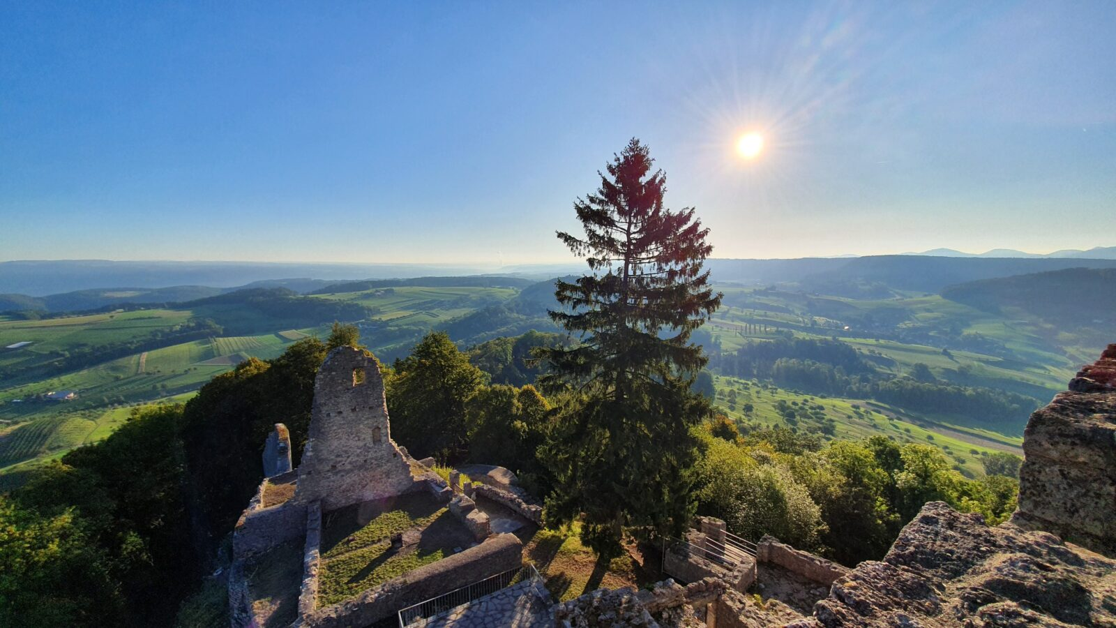 Ruine Farnsburg