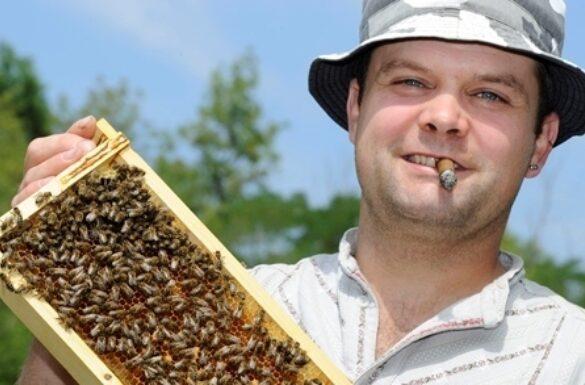 Bienenlehrpfad Liestal
