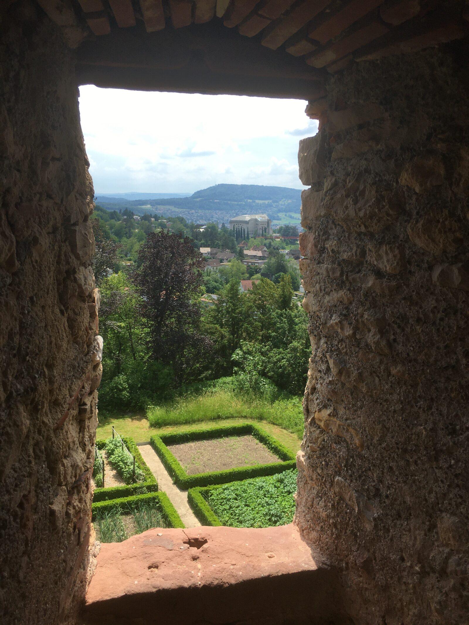 Burg Birseck Aussicht Dornach