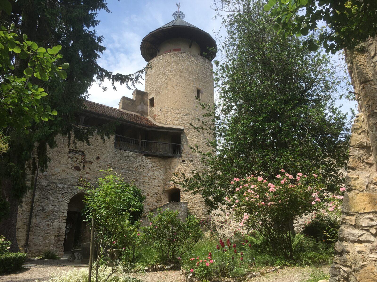 Burg Birseck Innenhof