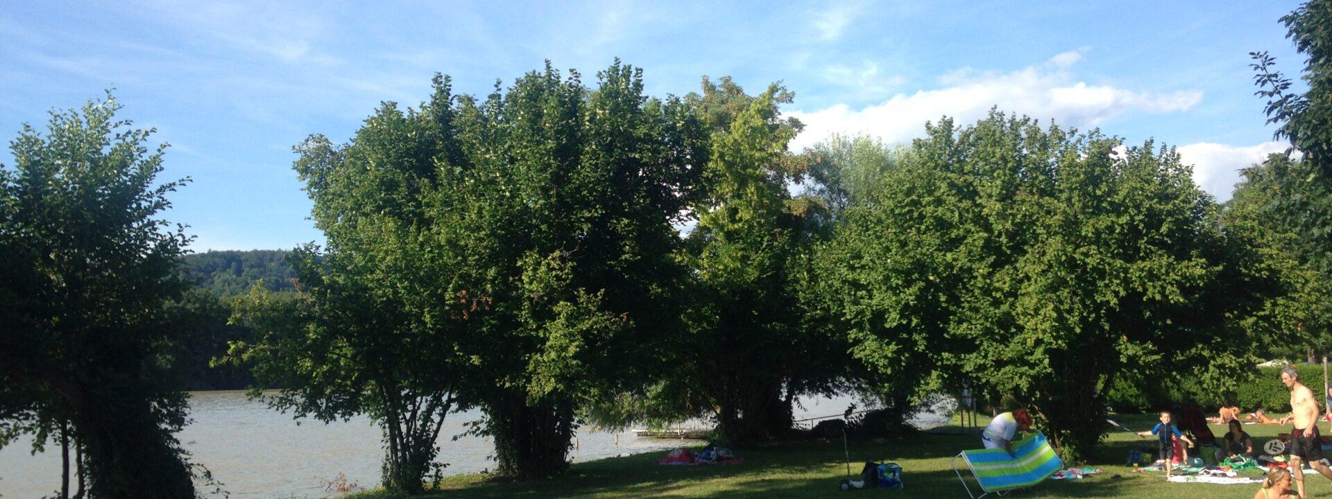 Camping und Schwimmbad am Rhein