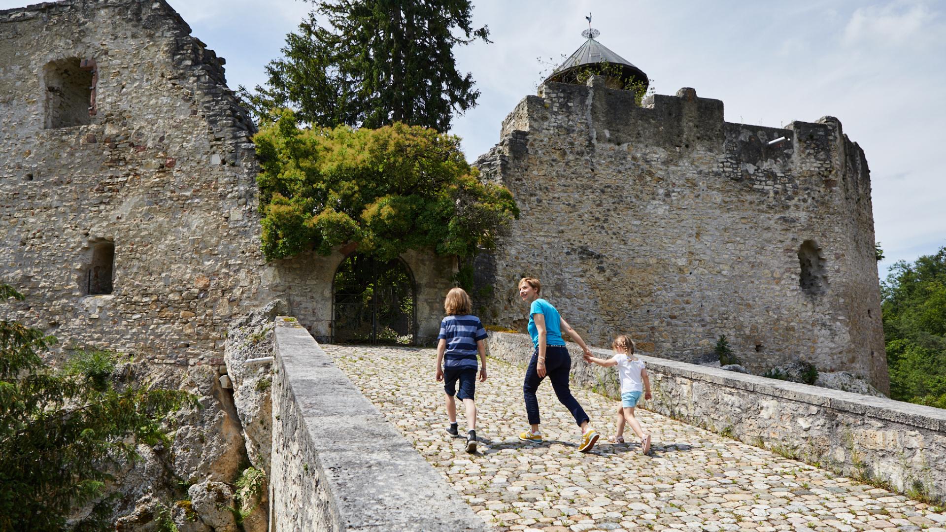 Baselland Burgen Schloesser 3