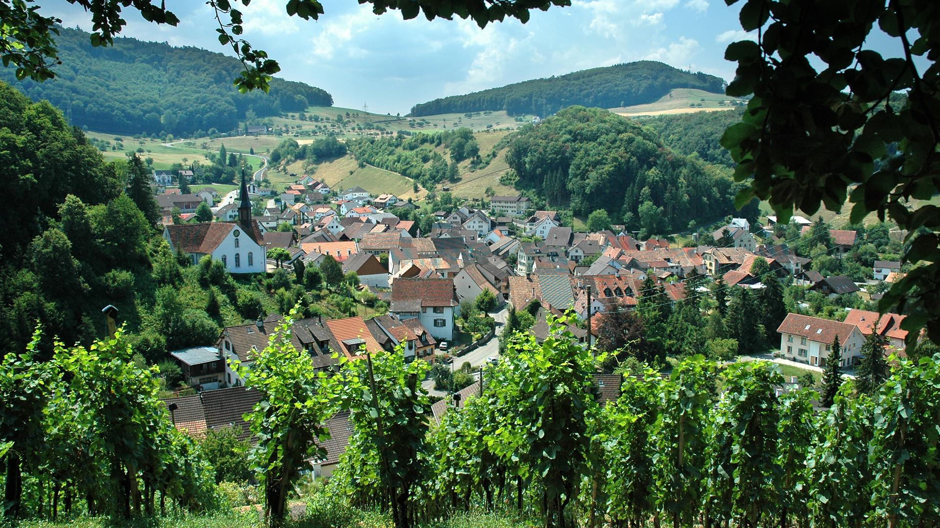 Baselland Kulinarische Vielfalt 2