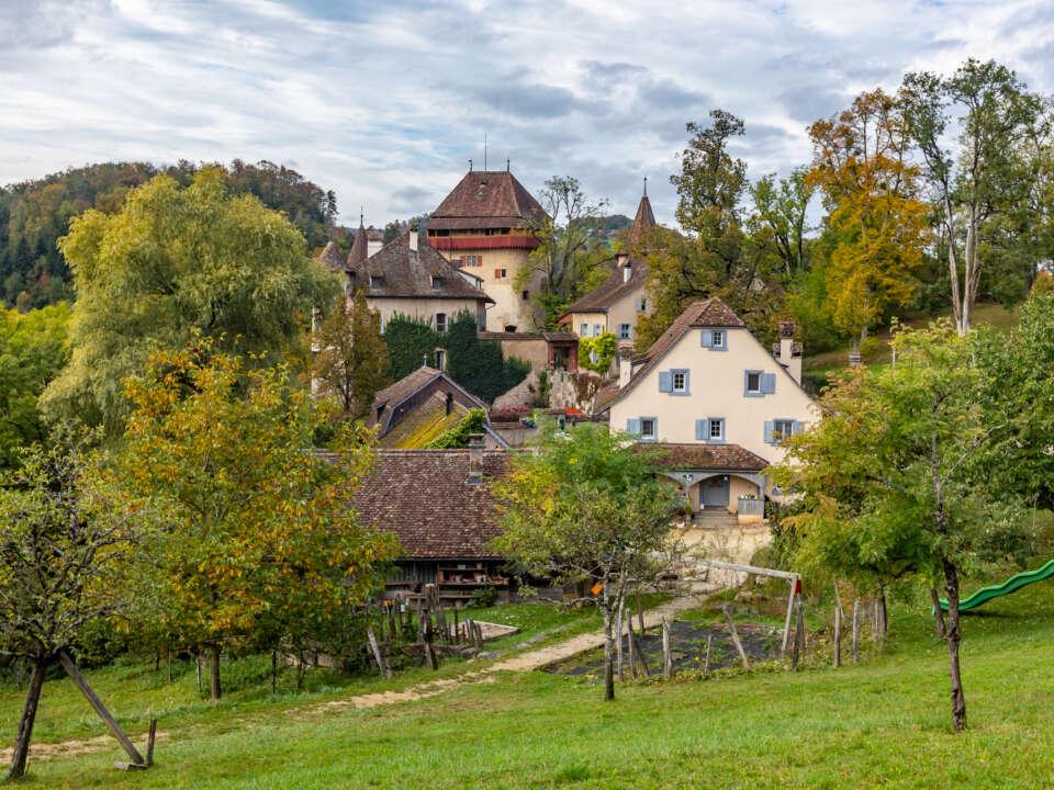 Schloss Wildenstein HD 4497