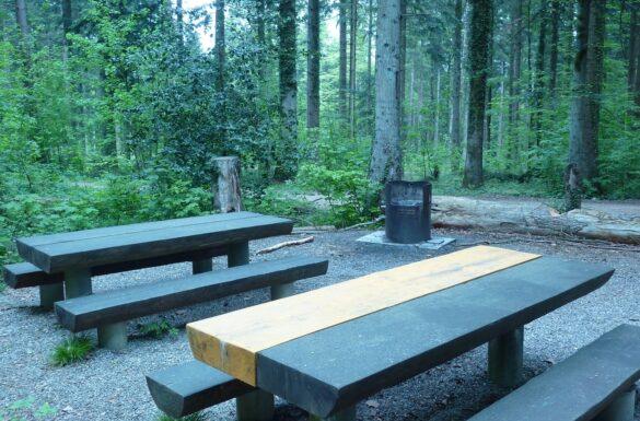 Feuerstelle alte Waldhütte, Zunzgen