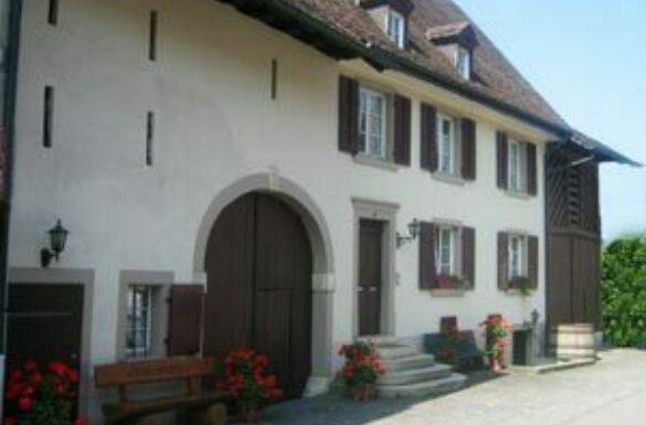 Robi's Weinkeller Arlesheim
