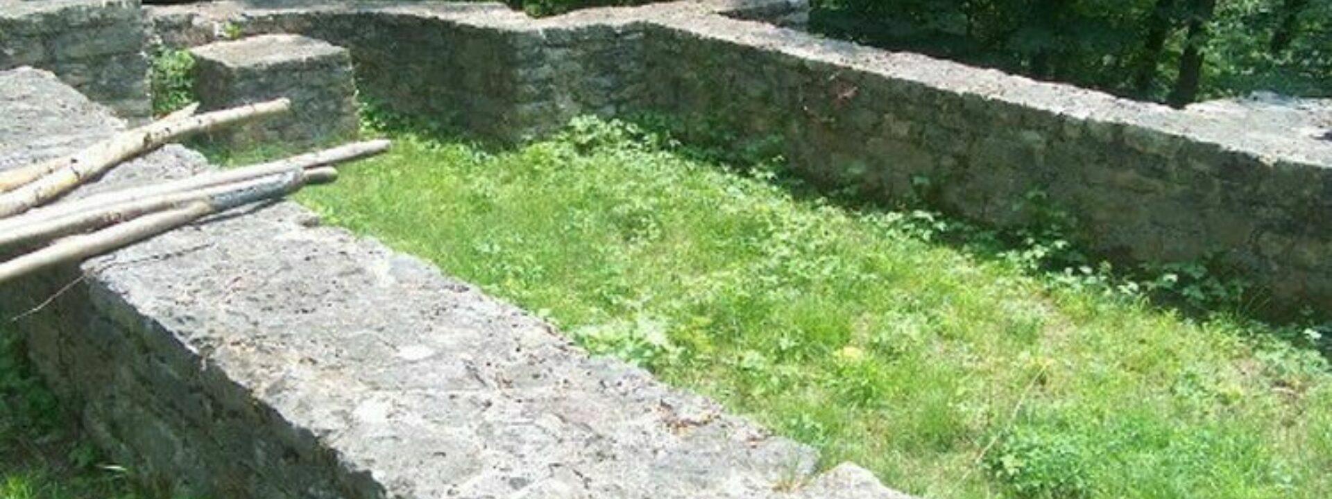 Ruine Burghalden