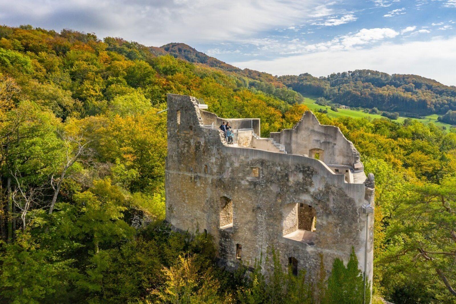 Ruine Homburg HD 0524