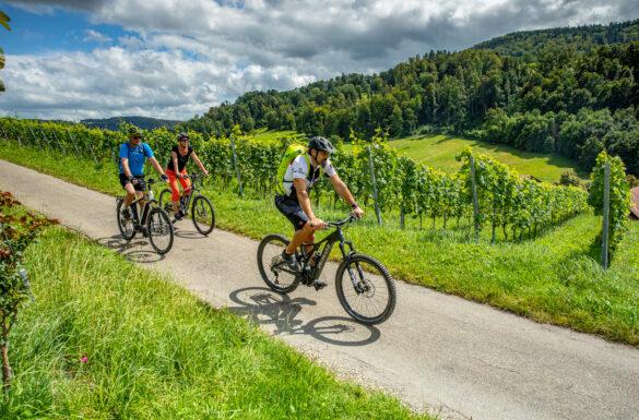 Velo, E-Bike, Mountainbike