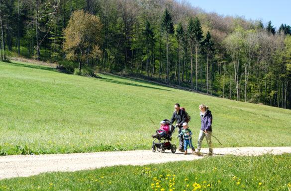 Wandererlebnis mit dem Bus - Hersberg - Arisdorf