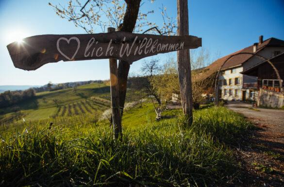 Zu Besuch beim Weinbauern